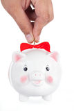 Pig-coin box Royalty Free Stock Images