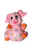 Pig coin box Stock Image
