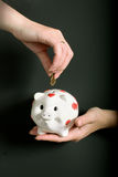 Pig-coin box in female hands Royalty Free Stock Photo