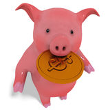 Pig and coin Stock Images