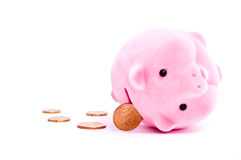 Pig and coins Royalty Free Stock Image