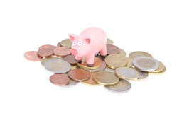 Pig on coins Royalty Free Stock Image