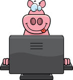 Pig Computer Royalty Free Stock Photos