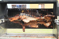 Pig cooked on opened fire. Pig - pork meat roasted on opened fire on grill Stock Images