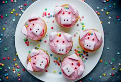 Pig cupcakes, animal shaped funny cakes for kids. Party, piggy cupcakes with pink frosting and marshmallow stock photos