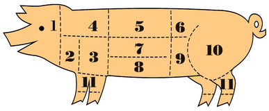 Pig Cut Out. Guide in an old fashion drawing style Royalty Free Stock Photo