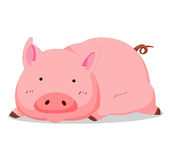 Pig so cute Royalty Free Stock Image