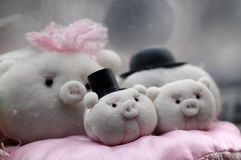 Pig dolls Royalty Free Stock Photos