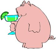 Pig drinking a Margarita. This illustration depicts a pig holding a large Margarita Stock Photos