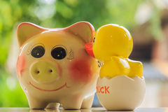 Pig and duck Royalty Free Stock Image