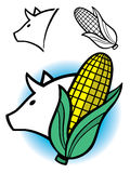 Pig and ear of corn graphic. Stylized graphic illustration of a pigs head and an ear of corn with separate line versions and a combined color version included stock illustration