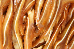 Pig ears Stock Images