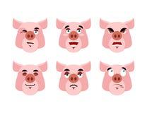 Pig Emotions. Set expressions avatar boar. Good and evil hog. Di Stock Photos