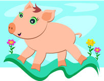Pig Experiencing Freedom Royalty Free Stock Photos