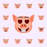 Pig in eyes with hearts emoji icon. Pig emoji icons universal set for web and mobile. On color background royalty free illustration