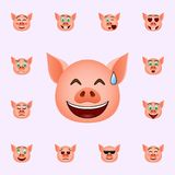 Pig in eyes with hearts emoji icon. Pig emoji icons universal set for web and mobile. On color background stock illustration