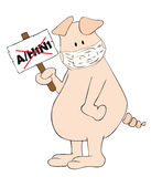 Pig with face mask and A/H1N1 placard in the hand. Stock Photography