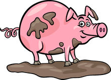 Pig farm animal cartoon illustration Stock Images