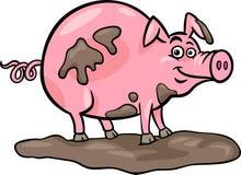 Pig farm animal cartoon illustration. Cartoon Illustration of Funny Pig Farm Animal in Mud Stock Images