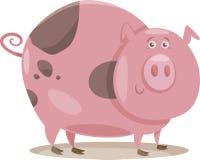 Pig farm animal cartoon illustration Stock Photos
