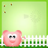 Pig in the farm Royalty Free Stock Images
