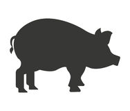 pig farm isolated icon design Royalty Free Stock Image