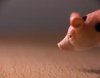 Pig figurine Stock Photo