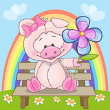 Pig with flower Royalty Free Stock Images