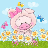Pig with flowers Stock Image