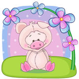 Pig with flowers Stock Photo