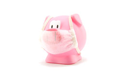 Pig flu with mouth cap. Isolated on white background stock photos