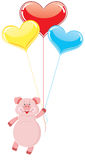 Pig flying on the balloons Stock Image