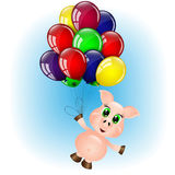 Pig flying on the balloons Stock Photography