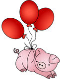 Pig flying with balloons Royalty Free Stock Image