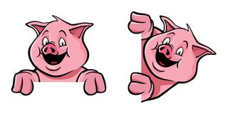 Pig frame decoration. Two pigs as frame decoration, as if holding an image Royalty Free Stock Image