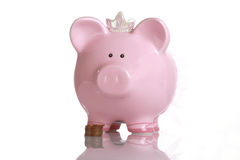 Pig fund Stock Photo