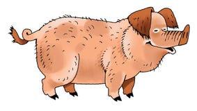 Pig funny smart pet Piglet. Ears hoof skin  fat favorite character Stock Images
