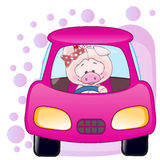 Pig girl in a car Stock Images