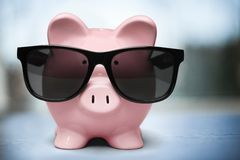 Pig In Glasses Stock Photography