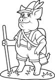 Pig going on a journey Stock Image