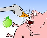 Pig and goose 2 Royalty Free Stock Images