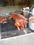 Pig on grill. Whole hog on grill royalty free stock photography