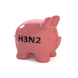 Pig h3n2_fin Stock Photos
