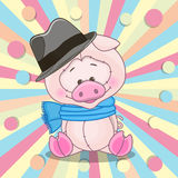 Pig with hat Stock Photos
