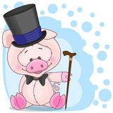 Pig in a hat Stock Image