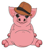 Pig in hat Stock Photo