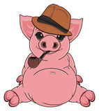 Pig in hat with pipe Royalty Free Stock Photos