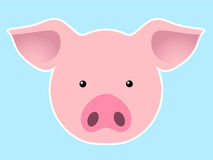 Pig head. Cute pig head on blue background vector illustration