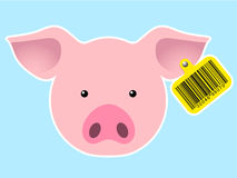 Pig head with bar code earmark Stock Photography