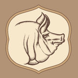 Pig head in engraving vector style Royalty Free Stock Photo